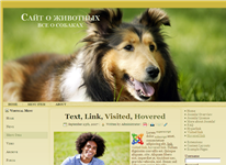Шаблон сайта про собак