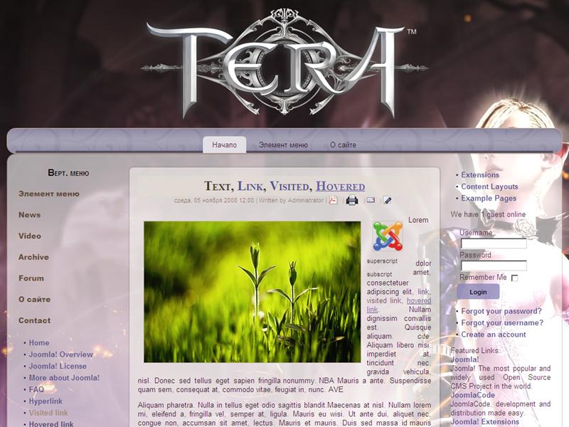 Игровой шаблон Tera