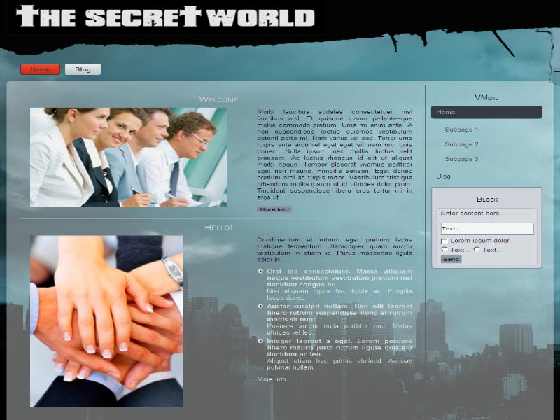 Шаблон - The Secret World
